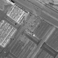 Satellite images show Iran building burial pits for coronavirus victims